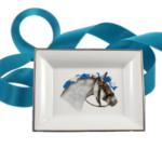 Lusitanien ruban bleu
